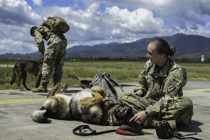 U.S. Army Spc. Mariah Ridge, a military working dog handler assigned to Joint Task Force-Bravo's Joint Security Forces, laughs at her military working dog, Jaska, during K9 hoist evacuation training